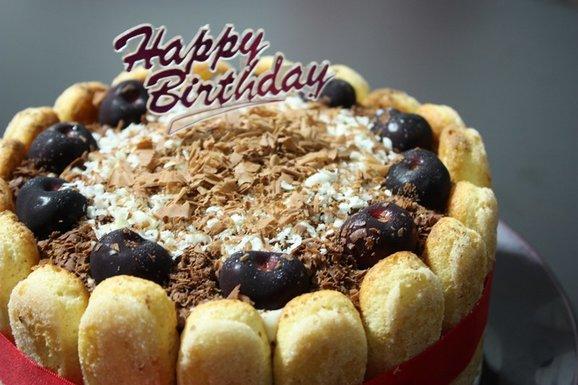 Tiramisu Charlotte Cake no liqueur less coffee Recipe Spring