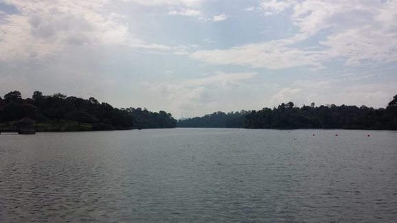 how to get to macritchie reservoir