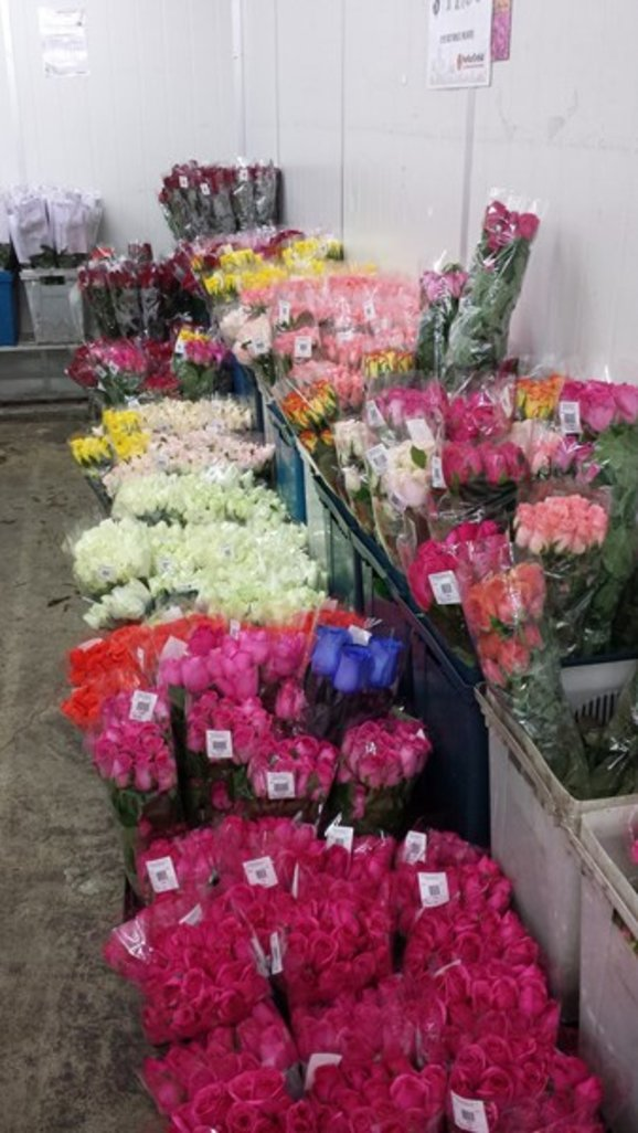 where to buy fresh flowers cheap