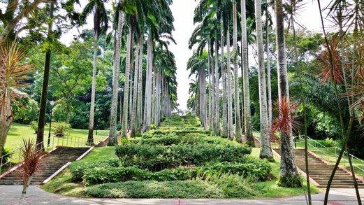 Ang mo kio garden garden ftempo for Garden ranch ymca pool
